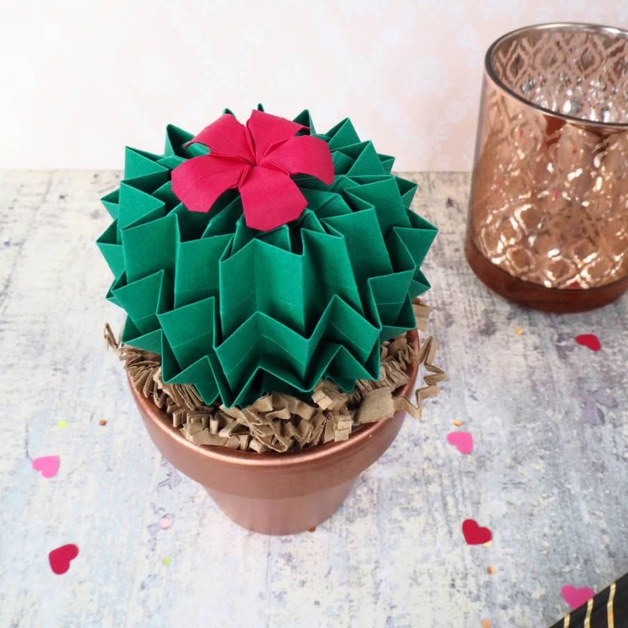 Craft Paper Succulent Plant