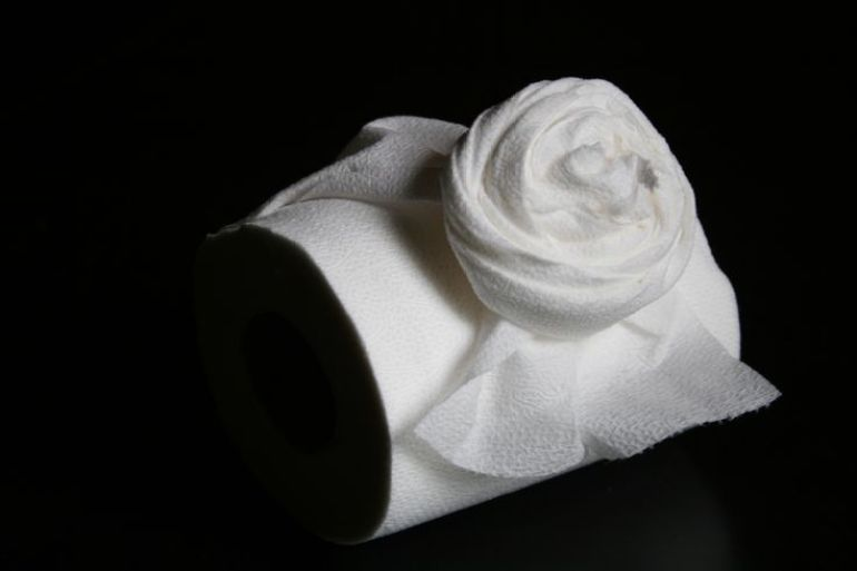 Tissue Paper Craft Roses