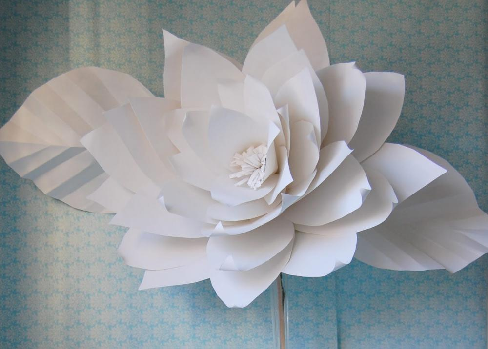 How to Make Giant Paper Flowers White