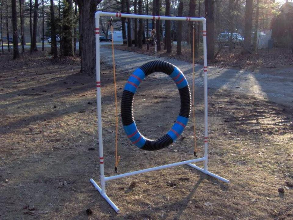 Crafts for Dogs Tire Jump