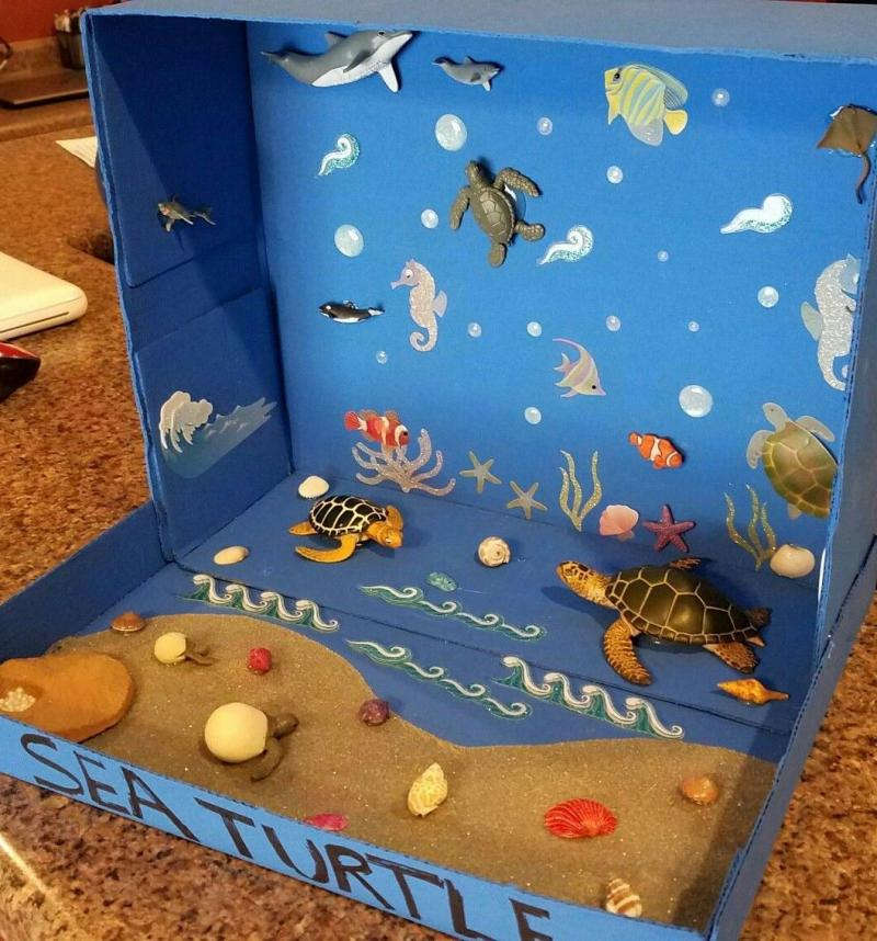 13 Easy and Creative Diorama Ideas For School Projects