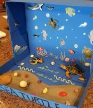 diorama aquascape