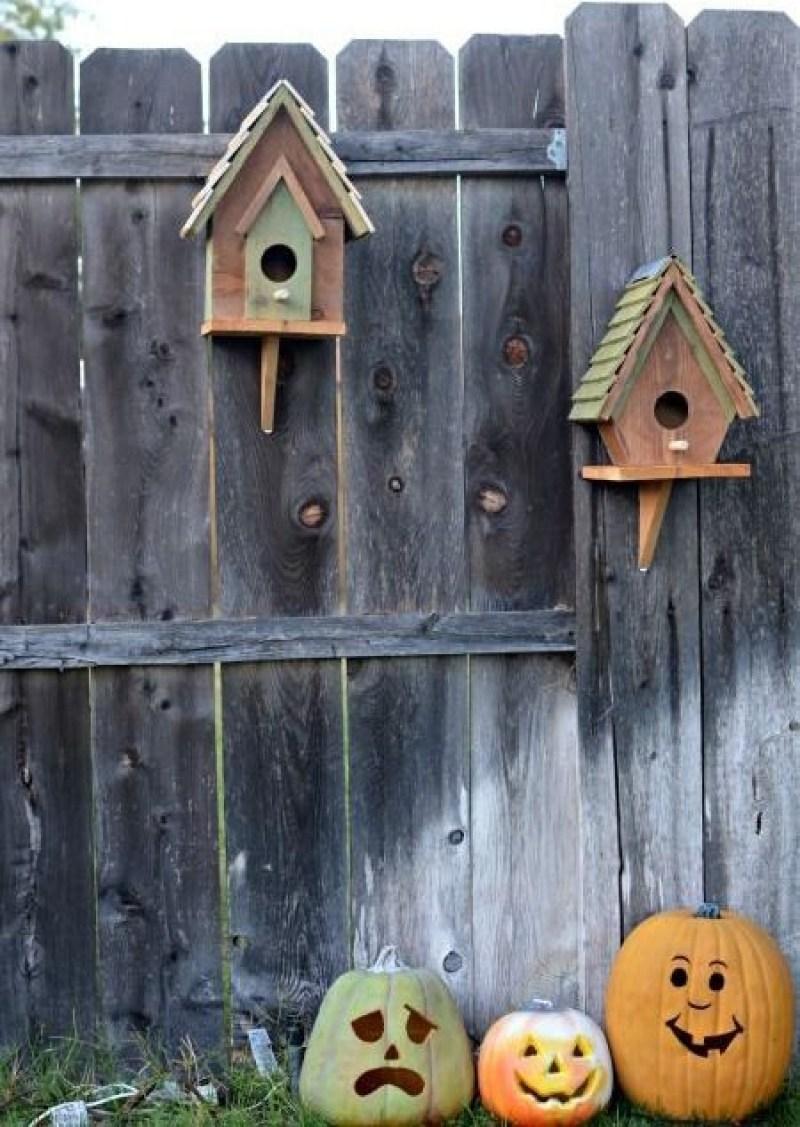 bird house barcelona