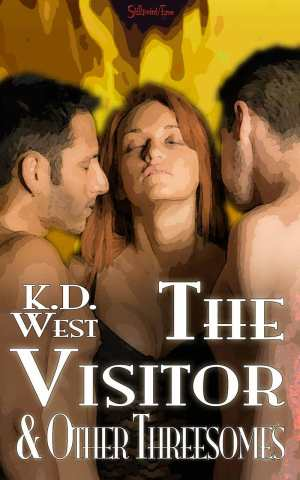 the-visitor-and-other-3somes-cover-3-800