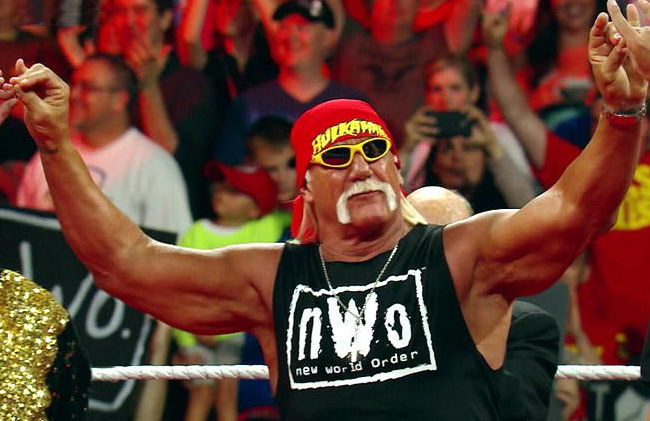 Image result for hulk hogan nwo