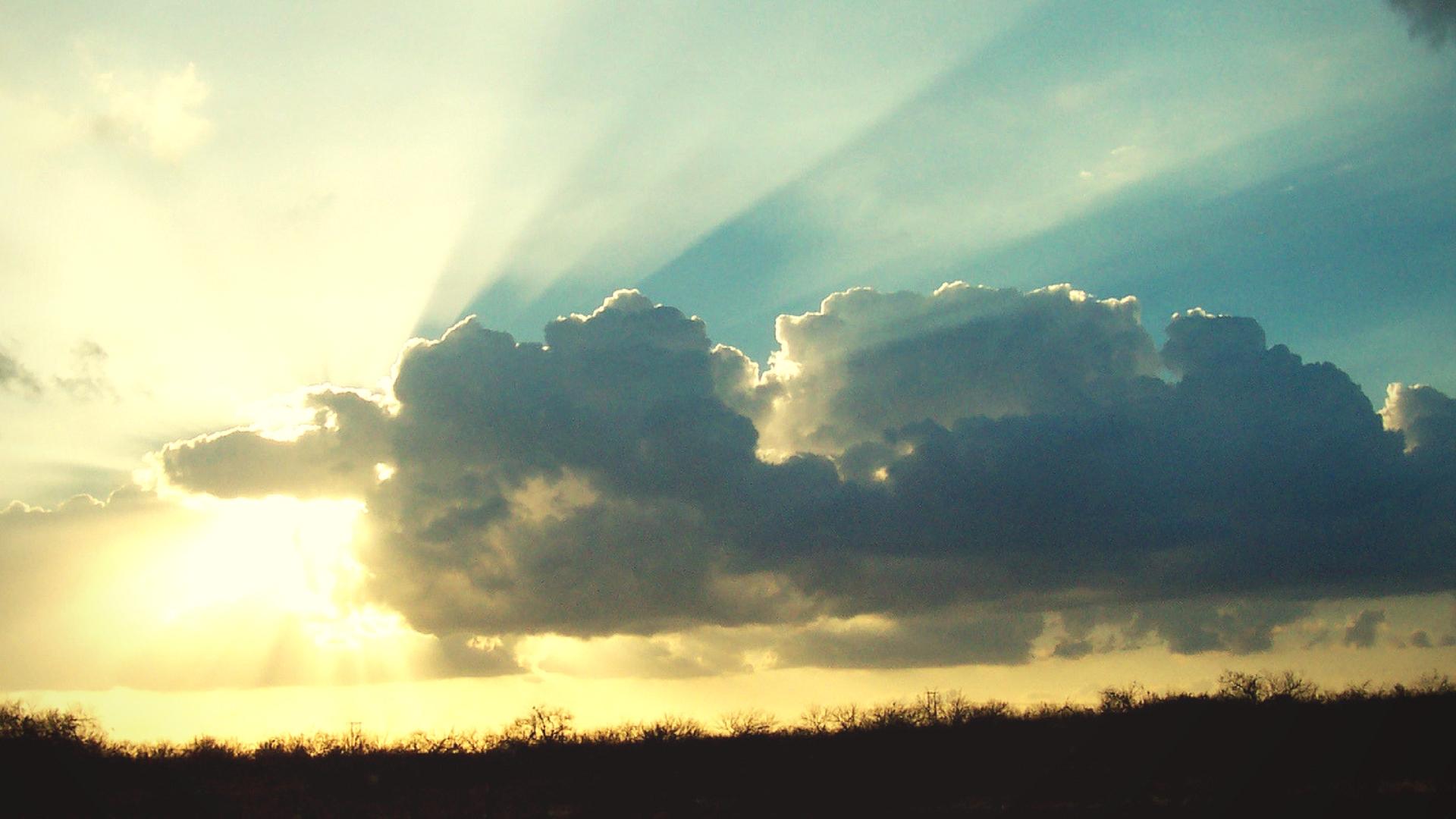 sunlight-bible
