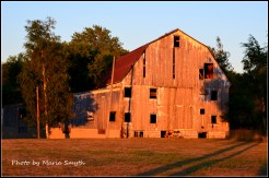 The sun is setting and the light on our barn was beautiful. Glorious! Bay Port, Michigan