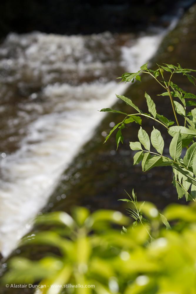 River Honddu