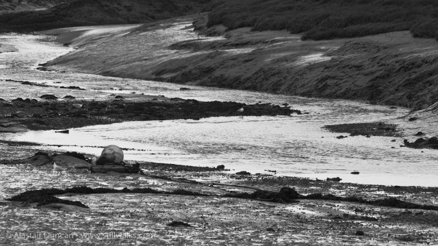 River Lliw