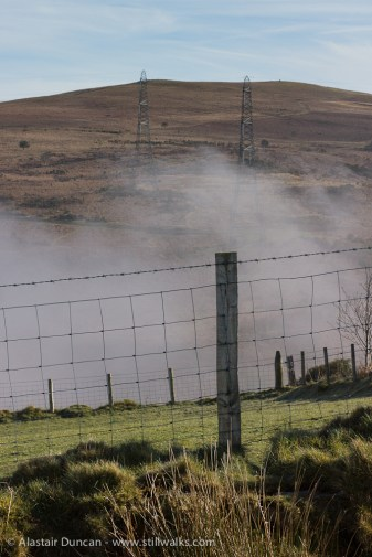 fence posts and mist