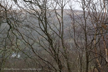 Lledr Valley Mist