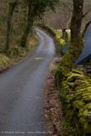 Lledr Valley Lane