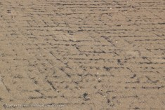 coal dust and sand chevrons
