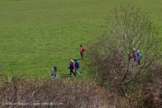 Walkers seen from above