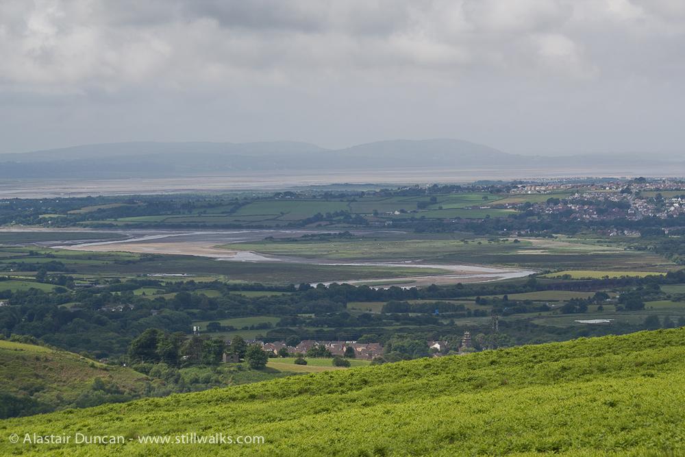 Loughor Estuary from Cefn Drum