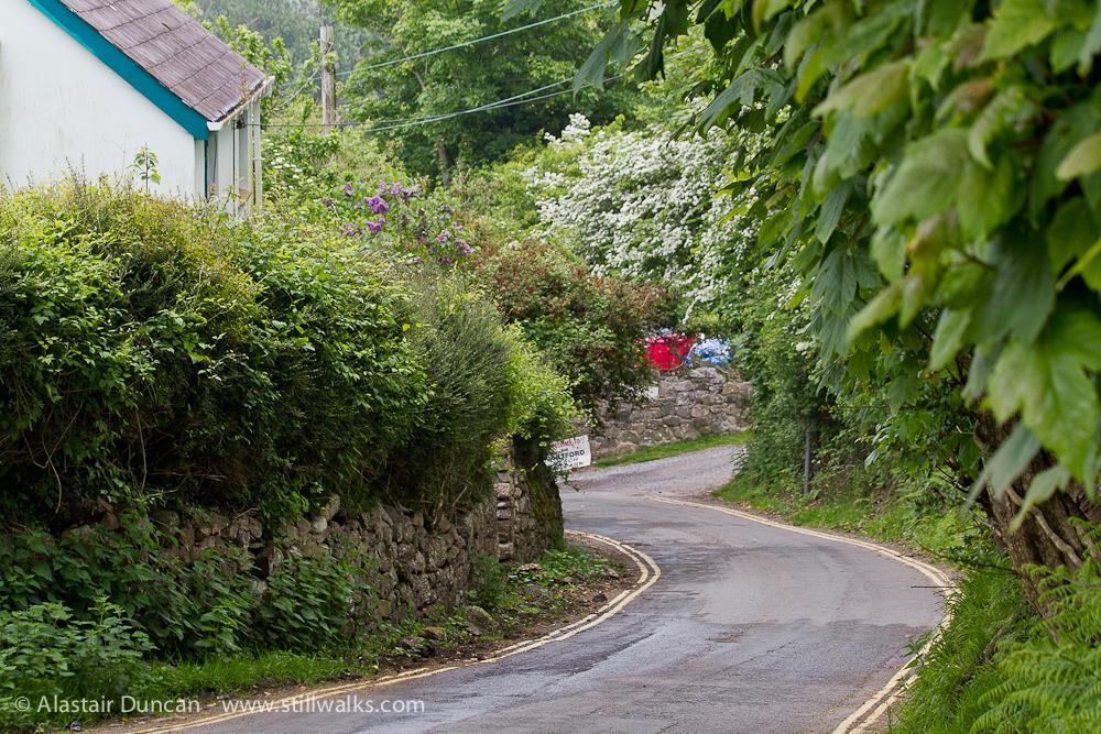 Gower lane