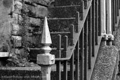 monochrome railings