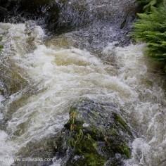 Corris river - Afon Deri