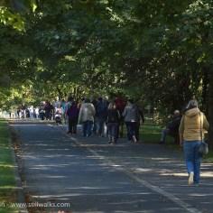 Swansea cycle/walking track
