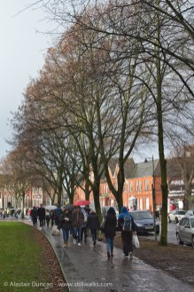 Cardiff students and Cardiff trees