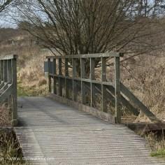 boardwalk footbridge
