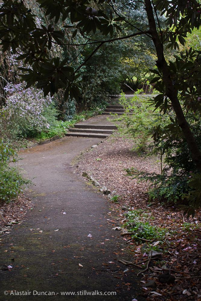 Swansea ornamental garden footpath
