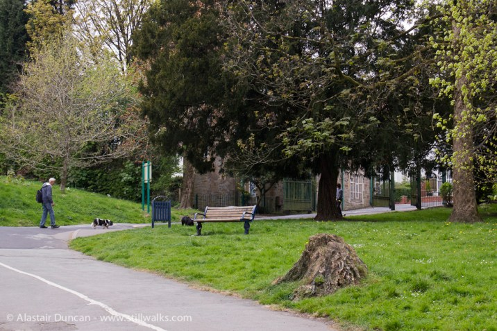 Singleton Park Swansea