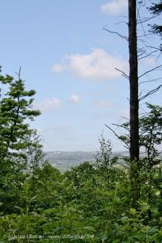distant landscape