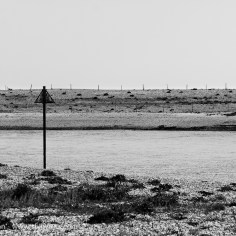 Pagham Harbour - monochrome