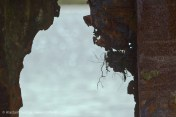 Frayed rust detail