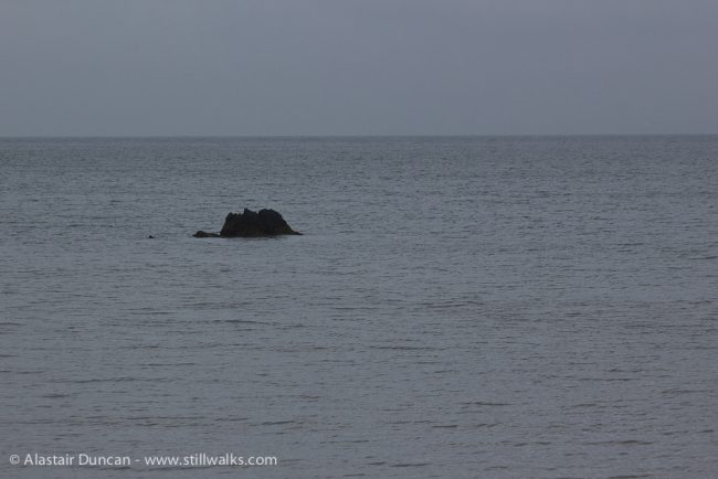 grey sea and rock