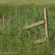 Marsh fence