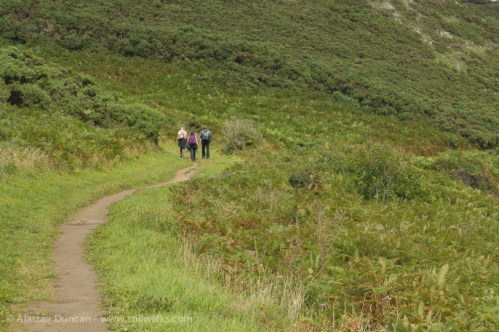 Cliff Path to Caswell