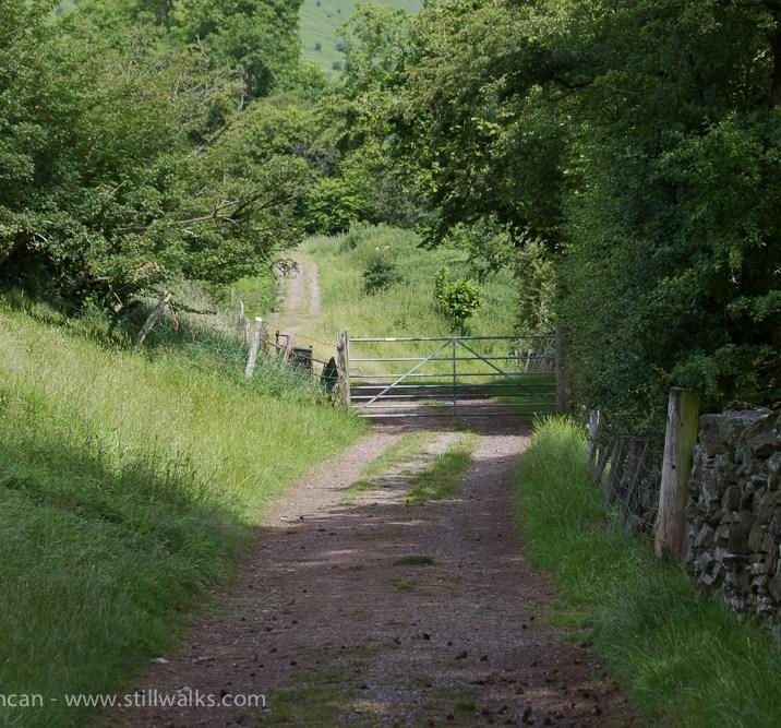 hillside track