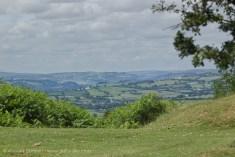 Welsh fields