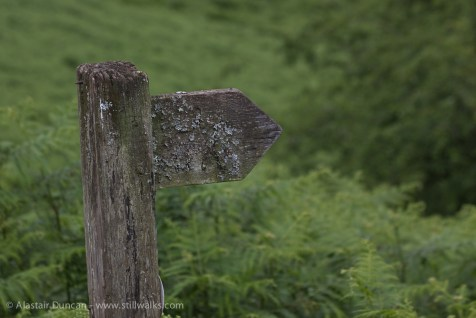 signpost to nowhere