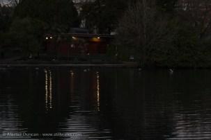 Dark Park 23 - lights