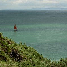 September - Welsh Cliff Path