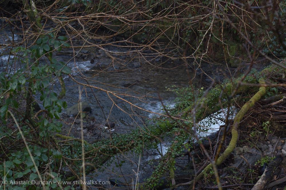 Dulais River