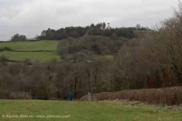 NBGW Winter meadow