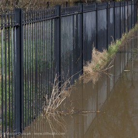 Fence reflection