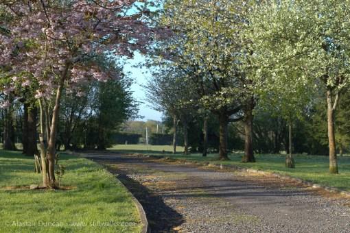 Park approach