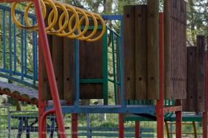 Blue Tit in playground