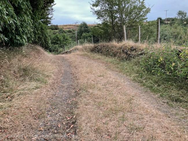 parched path