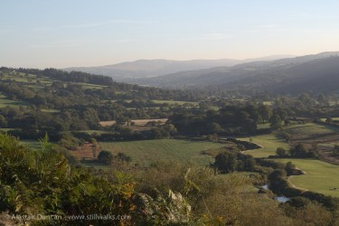 South Wales morning landscape