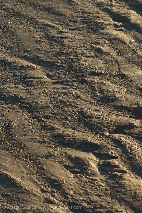 muddy textures