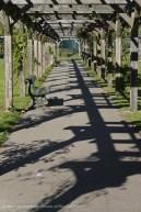 Pergola promenade