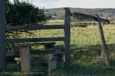 Marshes Churchyard-12