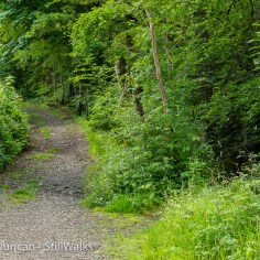 edgeland path