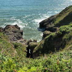 South Gower cliffs
